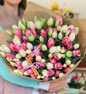 101 Нежный тюльпан