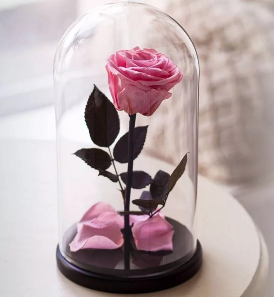 Роза в колбе Premium розовая