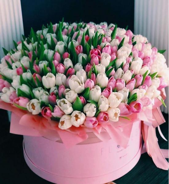 Коробочка с тюльпанами XXL