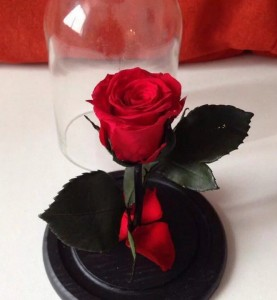 Роза в колбе Mini красная