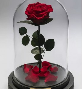 Роза в колбе King Size красная